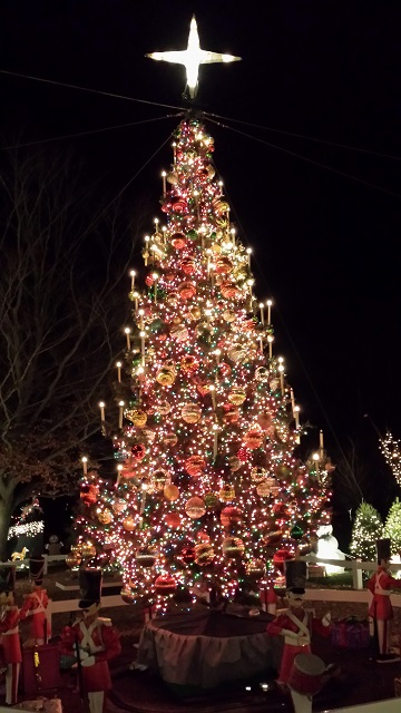 tree_640